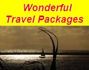 Amazing Travel Packages!